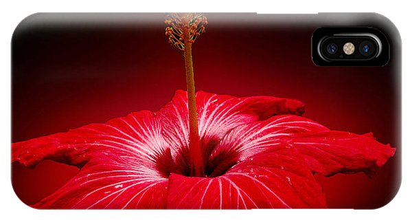 Red Hibiscus Tropical Flower Wall Art IPhone Case