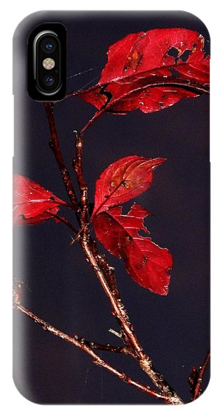 Red Leaves And Fading Moon IPhone Case