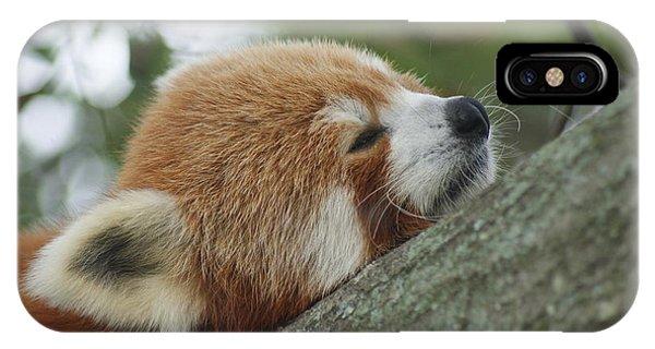 Red Panda Zen Phone Case by Leigh Ann Hartsfield