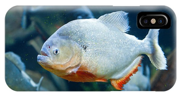 Red Piranha IPhone Case