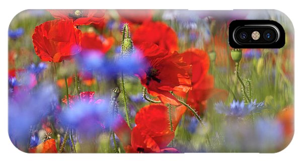 Red Poppies In The Maedow IPhone Case