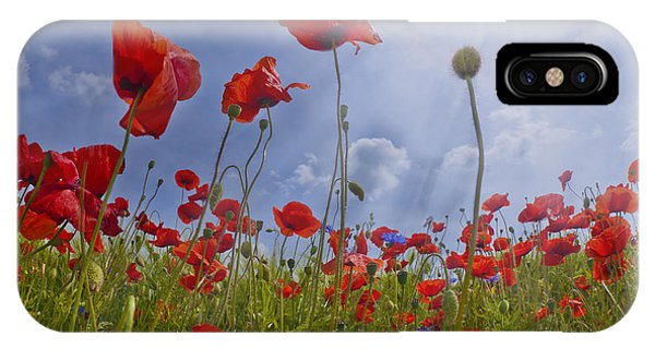 Poppies iPhone Case - Red Poppy And Sunrays by Melanie Viola