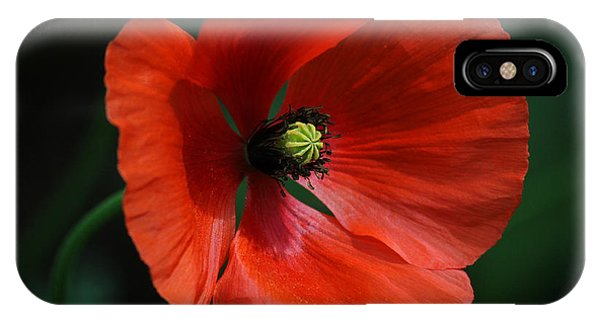 Red Poppy IPhone Case