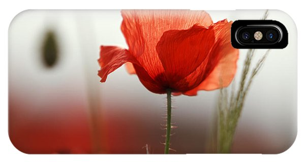 Red Sky iPhone X Case - Red Poppy Flowers by Nailia Schwarz