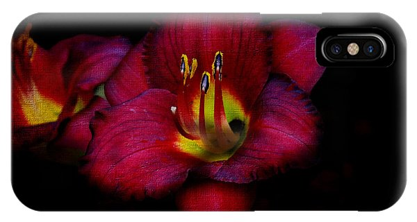 Red Red Lily IPhone Case