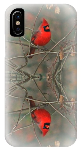 Red Reflection IPhone Case