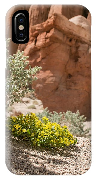 Red Rock Blooming IPhone Case