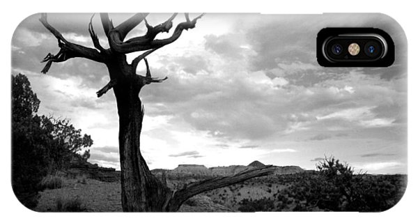 Red Rocks Dead Tree IPhone Case