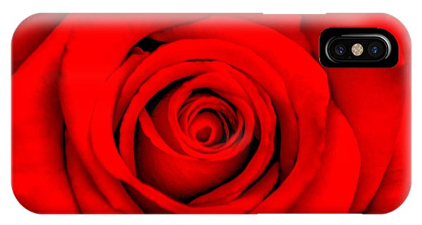 Fall Flowers iPhone Case - Red Rose 1 by Az Jackson