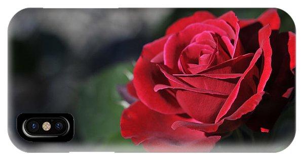 Red Rose Dark IPhone Case