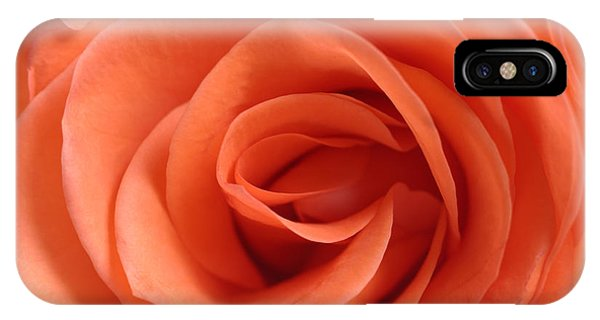 Red Rose Floribunda Closeup IPhone Case
