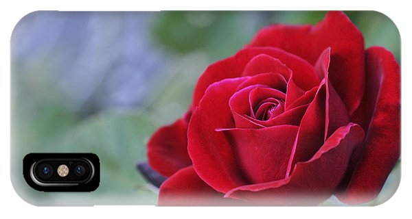 Red Rose Light IPhone Case