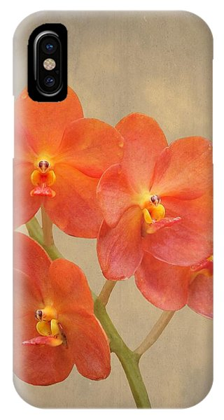 Scarlet iPhone Case - Red Scarlet Orchid On Grunge by Rudy Umans