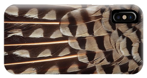 Northern Flicker iPhone Case - Red-shafted Flicker Feathers by William H. Mullins