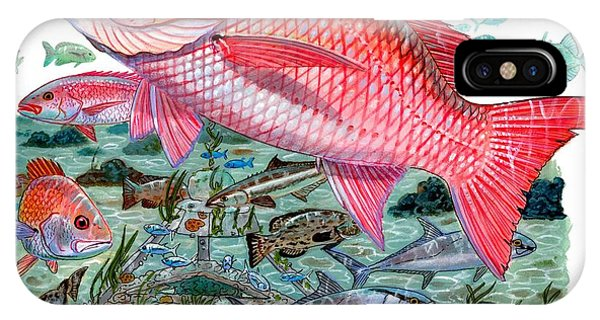 Reel iPhone Case - Red Snapper by Carey Chen