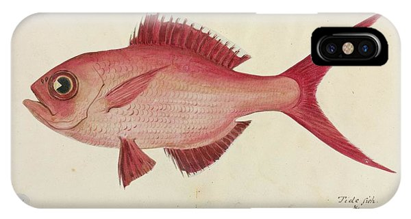 Red Snapper Fish Phone Case by Natural History Museum, London/science Photo Library