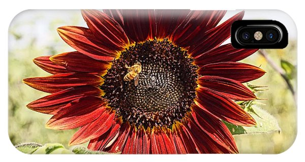 Red Sunflower And Bee IPhone Case