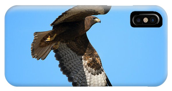 Red Tail Hawk iPhone Case - Red-tail Flight by Mike Dawson