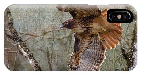 Red Tail Hawk iPhone Case - Red-tail Hawk In Flight by Angie Vogel