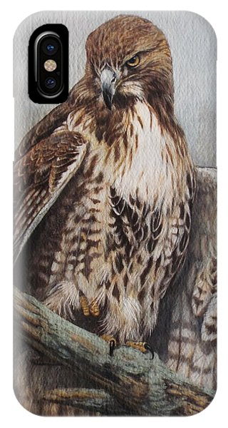 Red Tail Hawk iPhone Case - Red Tail Hawk by Ken Everett