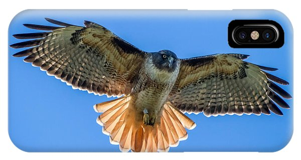 IPhone Case featuring the photograph Red Tail Hawk by Pierre Leclerc Photography