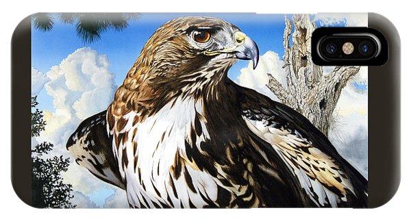 Da141 Red Tailed Hawk By Daniel Adams IPhone Case