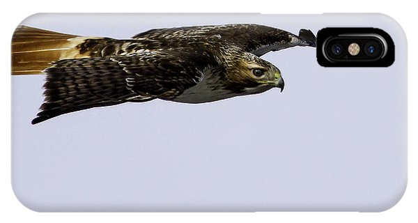 Red-tailed Hawk In Flight 2 IPhone Case
