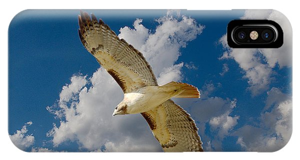 Red-tailed Hawk Soaring Series 5 IPhone Case