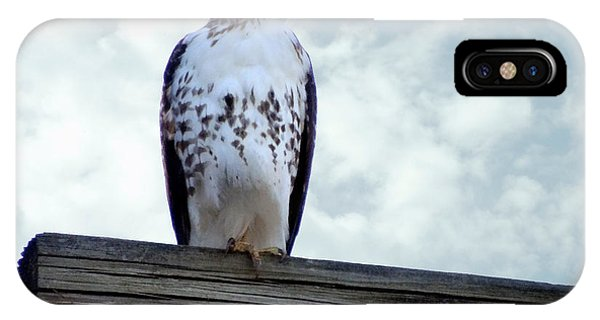 Red Tailed Hawk Waiting IPhone Case