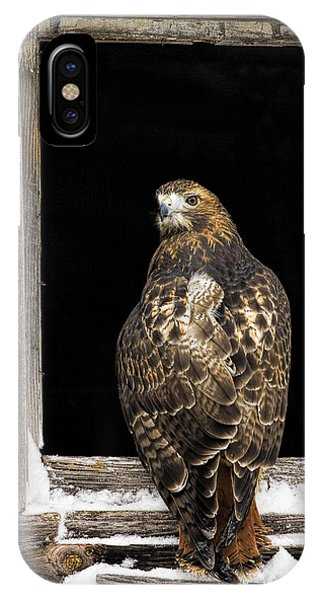 Red Tailed IPhone Case