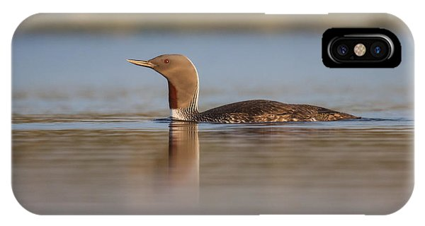 Red-throated Diver Gavia Stellata IPhone Case