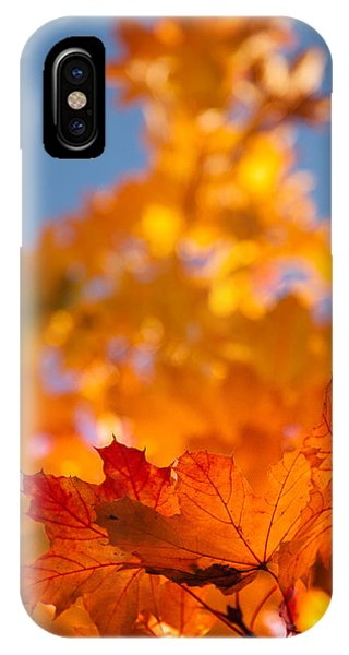 Red Tipped Gold IPhone Case