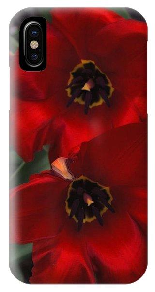 Red Tulip Pair IPhone Case