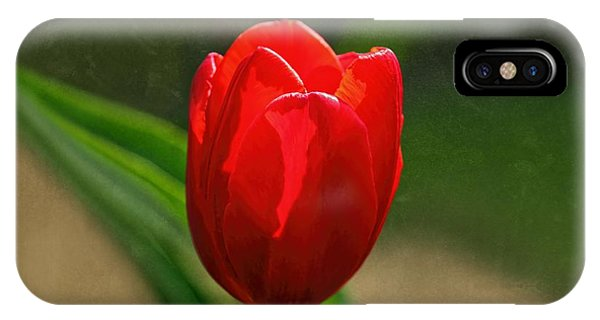 Red Tulip Spring Flower IPhone Case