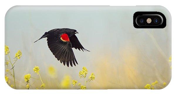 Red Winged Blackbird In Flight IPhone Case