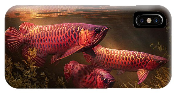 Aquatic Plants iPhone Case - Red_alignment by Javier Lazo