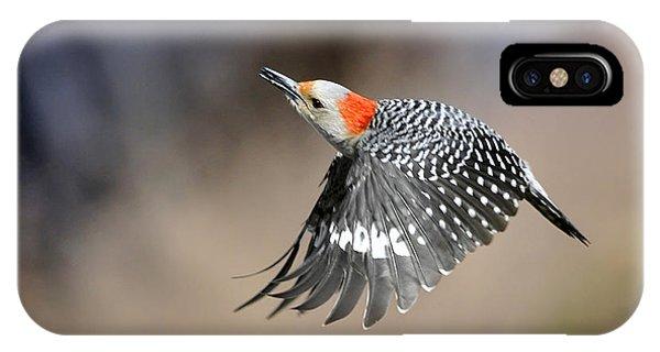 Redbelly Woodpecker Flight IPhone Case