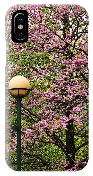 Redbud And Lamp IPhone Case