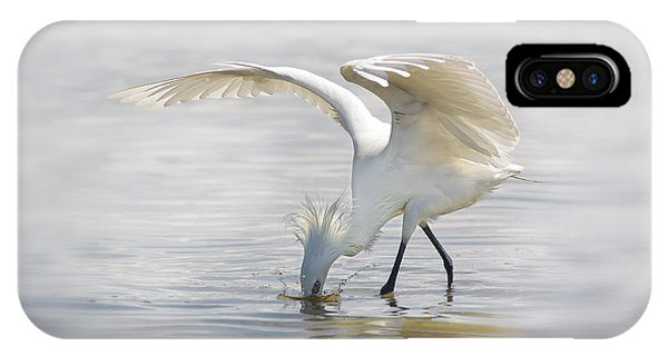 Reddish Egret White Morph Fishing. IPhone Case