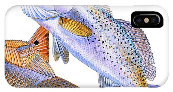 Drum iPhone Case - Redfish Trout by Carey Chen