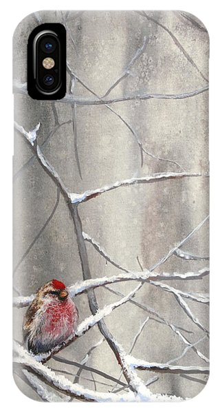 Redpoll Eyeing The Feeder - 1 IPhone Case