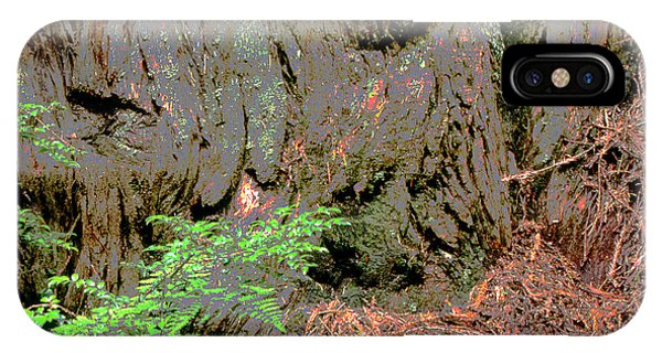 Coast Redwood IPhone Case