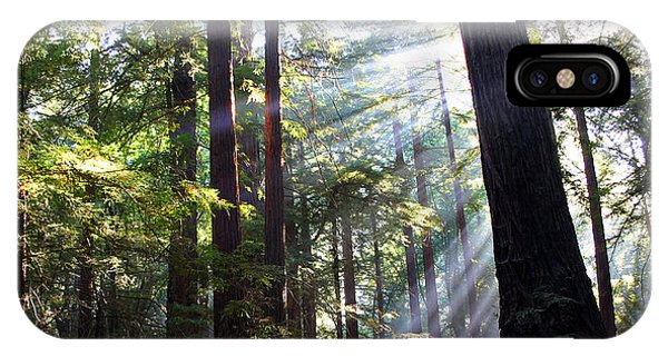 iPhone Case - Redwoodsbig-sur by Anthony Forster