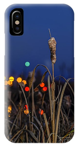 iPhone Case - Reed At Twilight by Viktor Birkus
