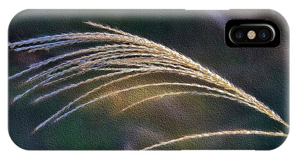 Reed Grass IPhone Case