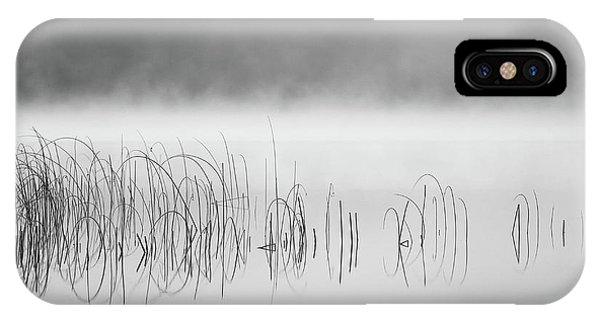 Reed In Fog Phone Case by Benny Pettersson