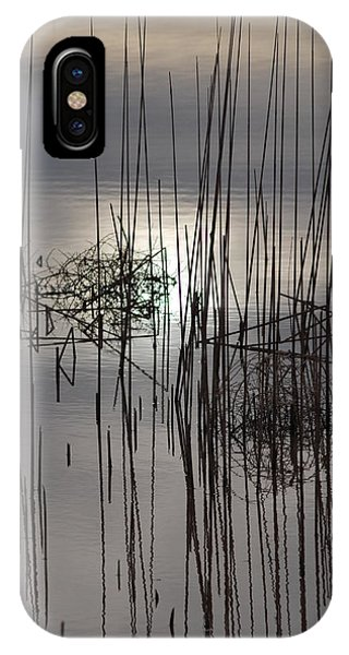 Reed Reflection 3 Phone Case by T C Brown