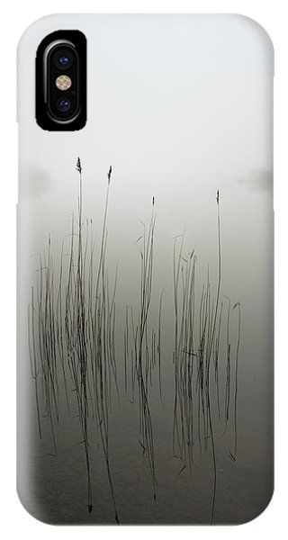 Clear iPhone Case - Reeds In The Mist by David Ahern