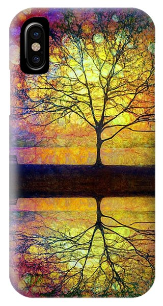 Reflected Dreams IPhone Case