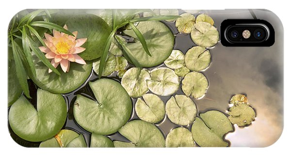 Reflected Light Upon Flowering Water Lilies IPhone Case